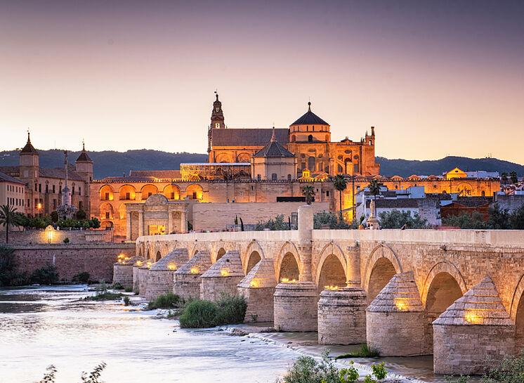 IX Workshop de Red REMEDIA: 21-22 de abril de 2022 en Córdoba